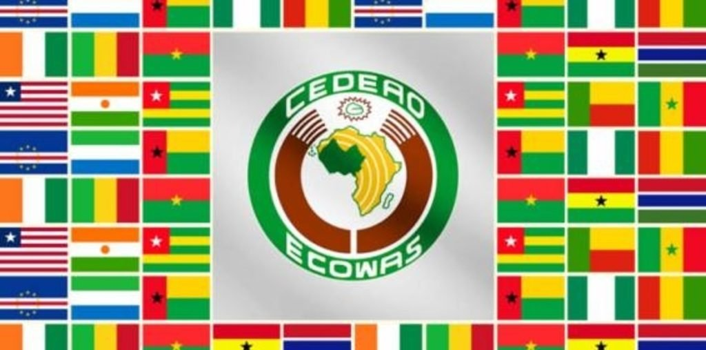 ECOWAS leaders reject change of government in Mali