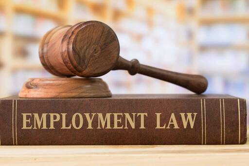 What Labour & Employment Lawyers do and how to find them online
